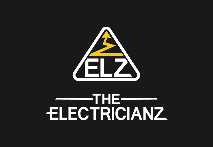 logo the electricianz