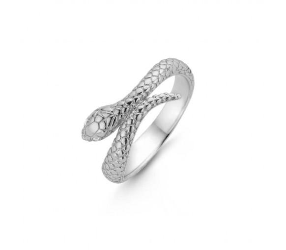Ti Sento Ring - 12160SI