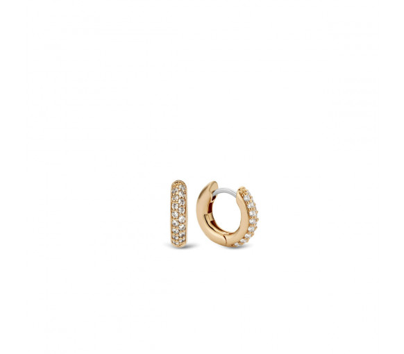 Ti Sento Earrings - 7210ZR