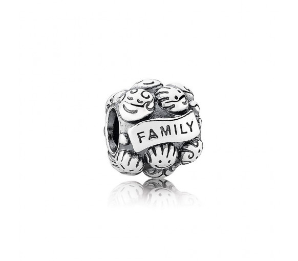 Pandora Family Love Charm - 791039