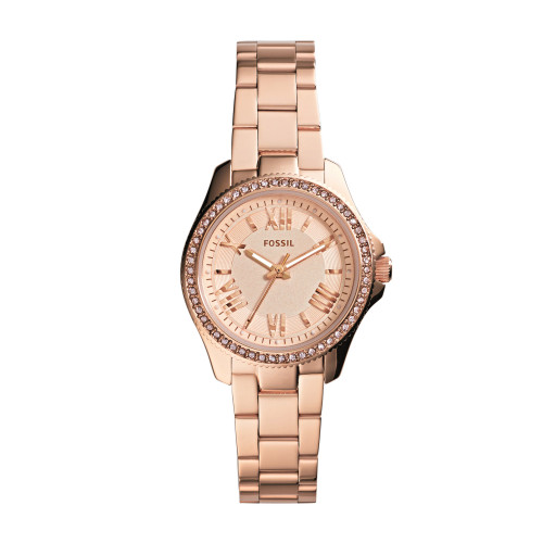 Fossil Cecile - AM4578